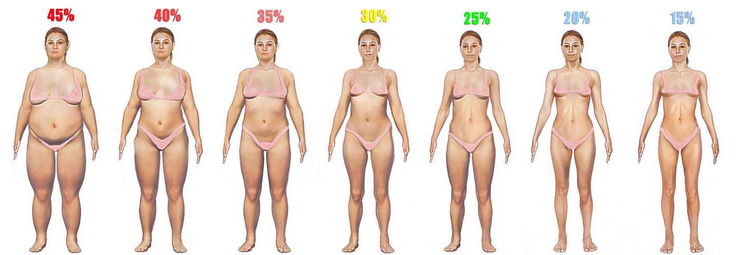Body Fat Comparison Pictures